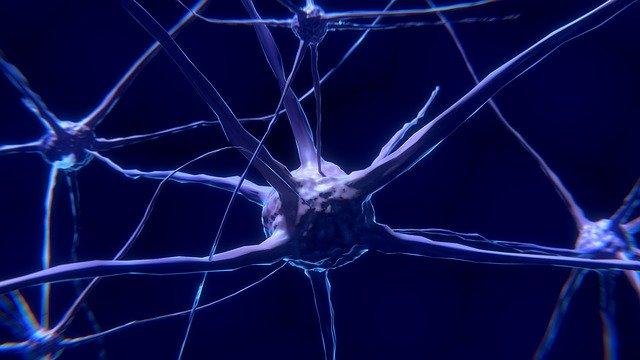 Neural Pathways & Broken Wrists