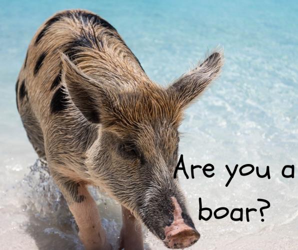 Are you a Bore?